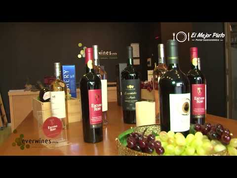 Everwines Chile