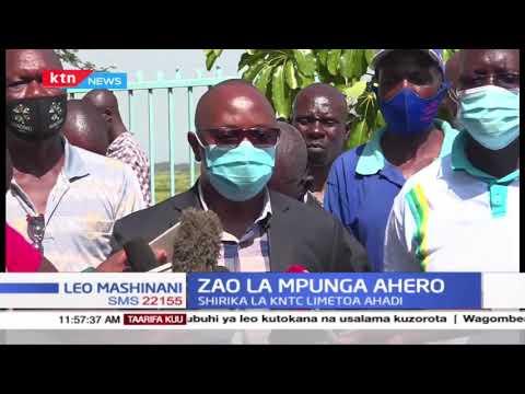 Zao La Mpunga Ahero: Wakulima Ahero walalamika kwa serikali wakidai wamekosa soko la mazao yao