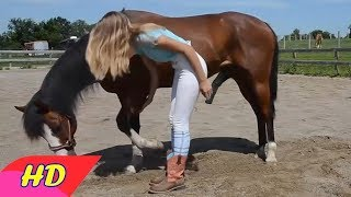 GIRL AND HORSE SHOW LIVE - Amazing Beautiful Girl Playing With Horse Smart