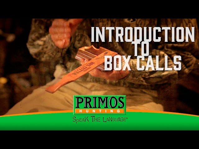 Introduction to Box Calls