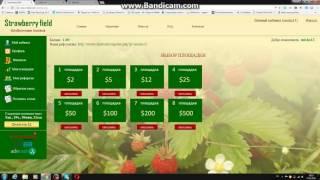 Strawberry field (Клубничная поляна) - заработок 2016!Не вкладывать!