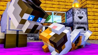 CAT LIFE FULL MOVIE   Episode 1   Minecraft Animation