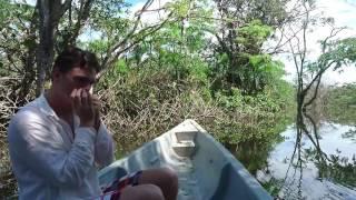 Jungle Blues (harmonica improv) in the Amazon Jungle