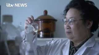 Tu Youyou becomes first Chinese woman to win a Nobel Prize for find malaria medicine from Chinese he
