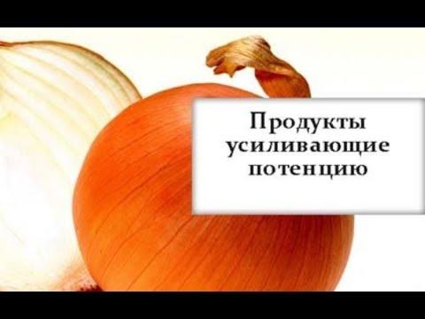 Молот тора санкт-петербурга