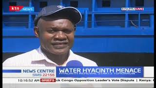 Good news for Kisumu residents as Water hyacinth menace to be sorted