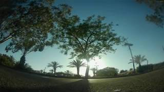 A walk in the park FPV freestyle