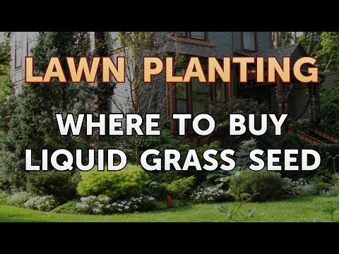 , title : 'Where to Buy Liquid Grass Seed