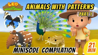 Animals With Patterns Minisode Compilation (Part 1/2) - Leo The Wildlife Ranger | Animation