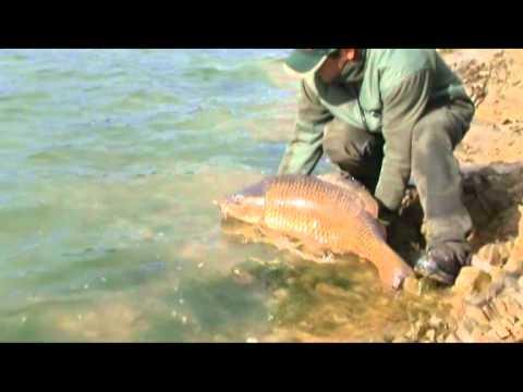 Pesca pagata di un ozern