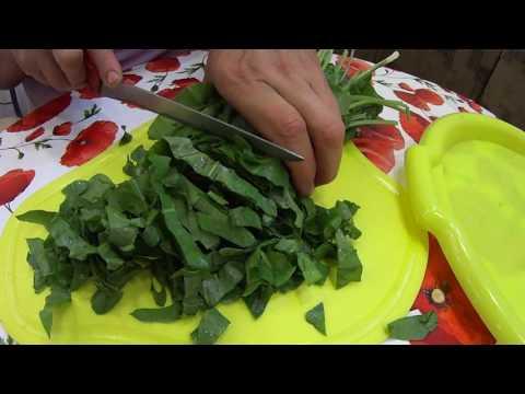 Салат из Щавеля,  лука и яйца с майонезом! Salad of Sorrel, onions and eggs with mayonnaise!