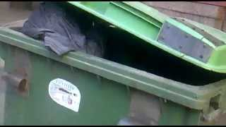 Козака - сепаратиста Александра Панченко выбросили в мусор
