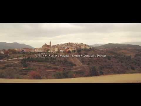 Vendimia 2015. Viñedo L'Ermita. Gratallops, Priorat