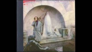 01 - John Frusciante - A Doubt (The Will To Death)