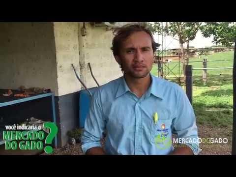 Depoimento de Cleidiomar gerente da fazenda Pro Campo -Piracanjuba, em Bela Vista de Goias-GO.