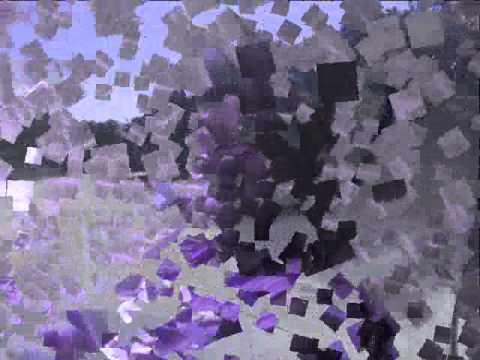 Tdc Slideshow 2011