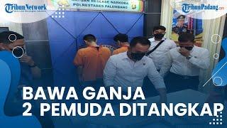 2 Pemuda Diringkus Polisi saat Bawa Puluhan Paket Ganja, Dapat dari Bandar di 7 Ulu Palembang