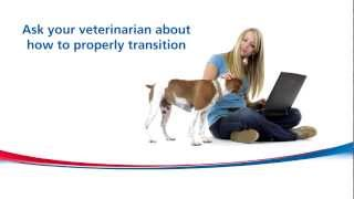 How to Gradually Transition Your Pet to NEW Food