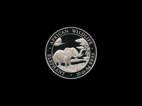 Video - Somalia Elefant Silber - 2019