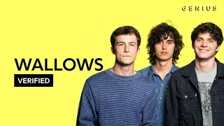 "Wallows ""Are You Bored Yet?"" Official Lyrics & Meaning 