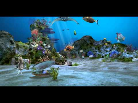 Vídeo do 3D Aquarium Live Wallpaper HD