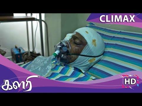 Kalari Full Movie - Climax | Krishna, Vidya Pradeep | VV Prassanna | Kiran Chand