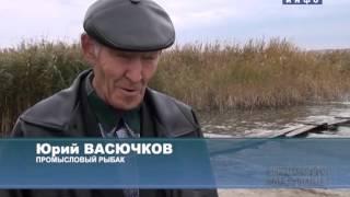 Зимняя рыбалка в далматовском районе