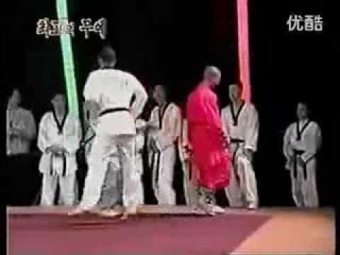 Shaolin Monk Kung fu vs Taekwondo Master
