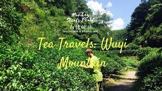 preview picture of video 'Tea Travels ep1: Origins of Black Tea & Oolong Tea at Wuyi Mountain, Fujian, China'