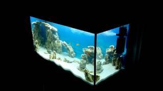 Как сделать крышку для аквариума своими руками.