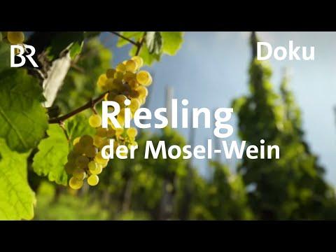 Deutscher Wein an der Mosel - eine Riesling-Reise | freizeit | Schmidt Max | BR | Doku
