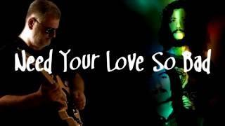 Need Your Love So Bad - Fleetwood Mac