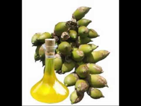 Babassu Oil Benefits