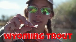 Big Horn Fly Fishing | Wyoming Trout