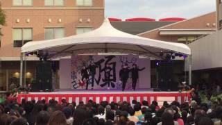 2016年畿央祭舞台「ひよっこcrew」