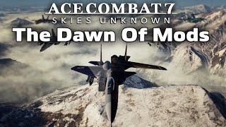 Scourge of the Fleet - Ace Combat 7 (Heatblur F-14B Tribute)