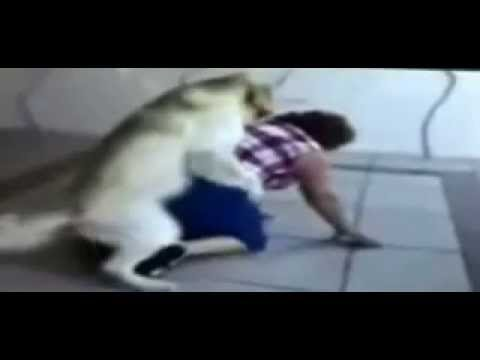 sex fail - dog lady