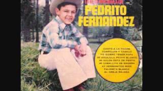 PEDRITO FERNANDEZ ~ CANTO A LA MADRE (vinyl)