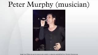 Peter Murphy Musician