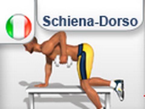 Restringa una cintura per reparto di petto di una spina dorsale