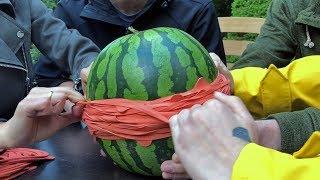 Wassermelonen Challenge2018   Melone+Gummibänder (Wir Nominieren: Dumm Tüch, Anton Und Tanzverbot)