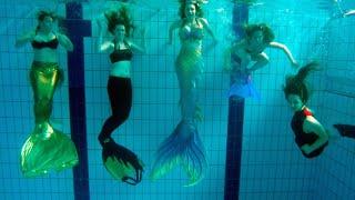 Seven Mermaids Meet   Mermaid Tails In Pool   Stella The Siren