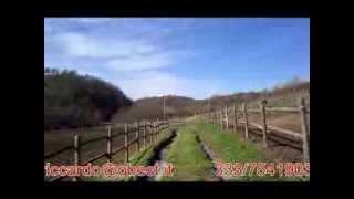 preview picture of video 'RIGNANO FLAMINIO - ex maneggio da restaurare'