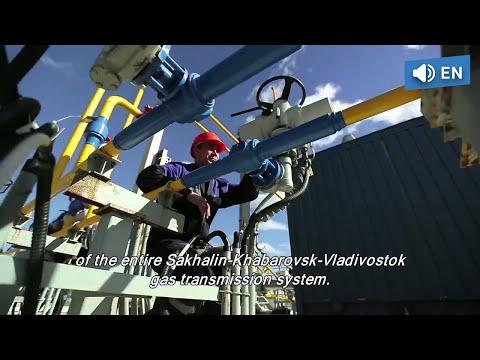 S-peterburg die Preise für das Benzin in