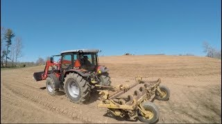Brand new Massey hooked to a 40 year old rock rake.