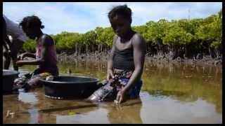 preview picture of video '2013 Mozambique Zimpeto Iris - Kruger Park - Inhambane - Jetski - Praia Barra - Land Rover'