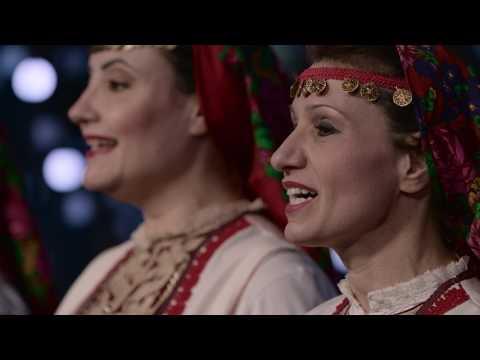 Barbati din Brașov care cauta femei singure din Drobeta Turnu Severin
