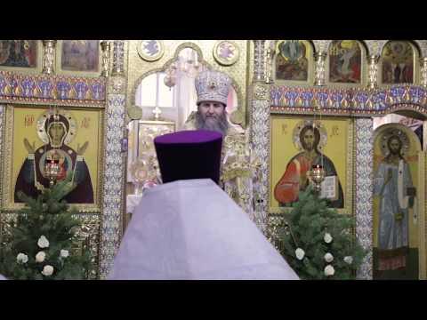 Митрополит Даниил: Рождественские богослужения наполнены необычайной радостью