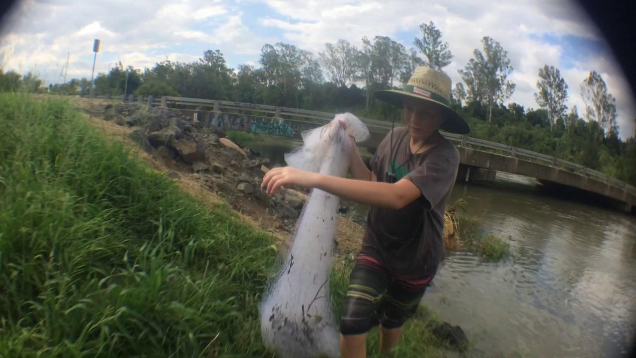 Fishing : Ipswich City Council