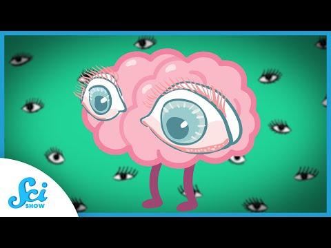 Myopia áfonya a látáshoz